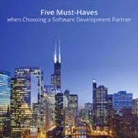 5 Must-Haves When Choosing A Software Development Partner