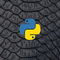 The Productive Advantage Of The Python Programming Language